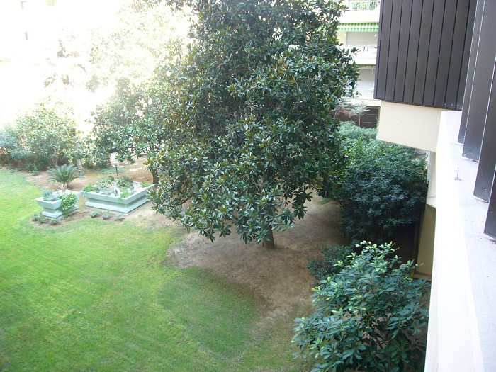 apartment - CANNES - GARDEN